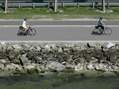 Tampa, Florida. 2/20/2016. A group rides bicycles on the scenic trail. Photos of the Courtney Campbell Scenic Highway and areas along it. Photo by Bill Serne