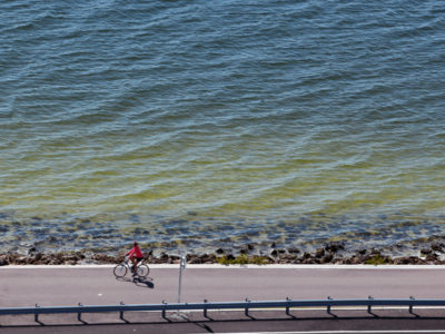 Tampa, Florida. 2/20/2016. A lone bike rider on the scenic trail. Photos of the Courtney Campbell Scenic Highway and areas along it. Photo by Bill Serne