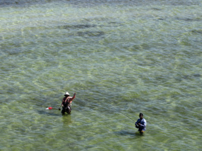 Tampa, Florida. 2/20/2016. Two men fish in the shallows along the Courtney Campbell Scenic Highway and scenic trail. Photos of the Courtney Campbell Scenic Highway and areas along it. Photo by Bill Serne