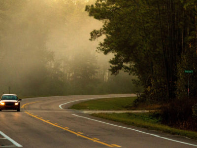 Early-morning fog hangs over SR 19 near the Ocklawaha River along the Florida Black Bear Scenic Byway on December 28, 2015. Photo by Tom Burton