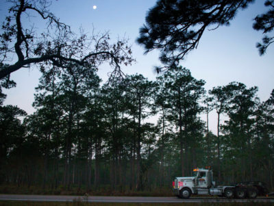 A near full moon is seen setting over the Ocala National Forest north of Salt Springs on SR 19 along the Bear View Scenic Byway on December 28, 2015. Photo by Tom Burton