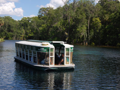 Glass Bottom Boat Tours Silver Springs
