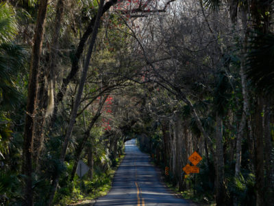 A canopy covers Walter Boardman Lane in the southern portion of the Heritage Crossroads: Miles of History Heritage Highway. The Florida Scenic Highway, comprised of 89 miles of roadways, travels through Flagler, Volusia and St. Johns Counties in northeastern Florida. Daron Dean for VISIT FLORIDA