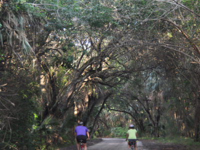 Historic Jungle Trail, Wabasso