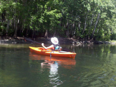 Kayaking The Ocklawaha River