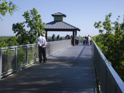 Lake Apopka Overlook