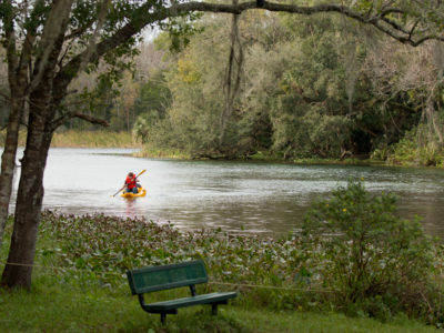 A man paddles in Alexander Springs off of CR 445, a spur of the Florida Black Bear Scenic Byway, on Janaury 5, 2015. Photo by Tom Burton