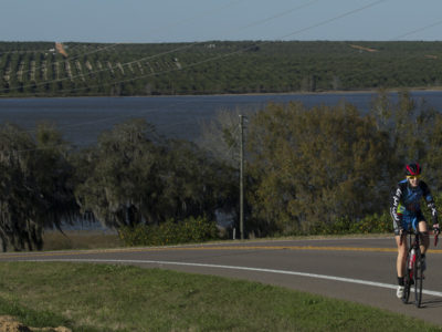 Orange groves complete the scenic view as a lone biker rides the foothills on Ridge Scenic Highway. WILLIE J. ALLEN JR.
