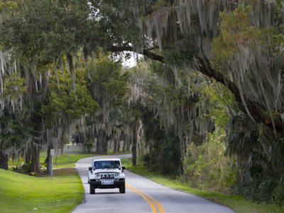 Over 150 miles of scenic roadway, the River of Lakes Heritage Corridor, takes you through Lake, Volusia , and Seminole County. This scenic byway is a combination of historic preservation, rich culture and Florida natural habitats at it's finest. (Photo/Julie Fletcher)
