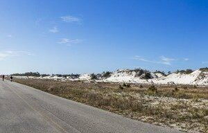 A panoramic view of bicyclists riding near the dunes, pines, on the Big Bend Scenic Byway in St. George Island State Park. COLIN HACKLEY PHOTO EDITOR'S NOTE: This image is comprised of multiple photos taken at the same moment and stitched together by Photoshop to create a panorama.